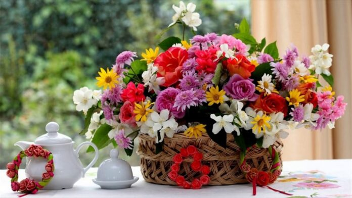 6 Awesome Flowers To Purchase For Christmas Day